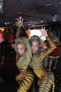 Magic Mirror   Tiger Tiger