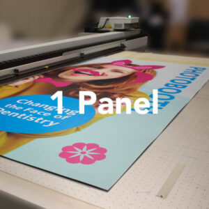 1CustomSkinPanel