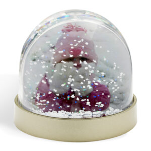 Christmas Photo Snow Globe