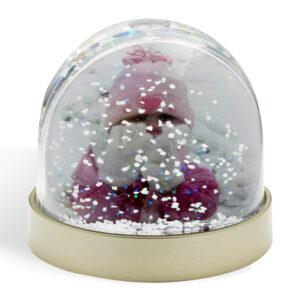 Christmas Photo Snow Globe